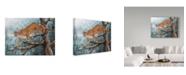 """Trademark Global Jeff Tift 'High Climber' Canvas Art - 24"""" x 32"""""""