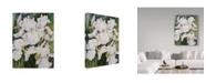 "Trademark Global Joanne Porter 'White Iris' Canvas Art - 35"" x 47"""