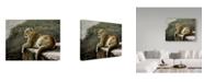"Trademark Global Ron Parker 'Rimrock Cougar' Canvas Art - 24"" x 32"""