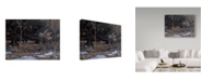"Trademark Global Wilhelm Goebel 'Grouse On The Wing' Canvas Art - 35"" x 47"""