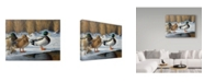 """Trademark Global Wilhelm Goebel 'Winter Ducks' Canvas Art - 35"""" x 47"""""""