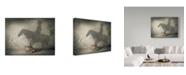 "Trademark Global J Hovenstine Studios 'Believe 2' Canvas Art - 32"" x 24"""
