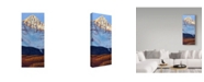 "Trademark Global James W. Johnson 'Wilsons Peak In Fall' Canvas Art - 8"" x 19"""
