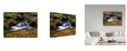 """Trademark Global J.D. Mcfarlan 'West Prong White Water' Canvas Art - 47"""" x 35"""""""