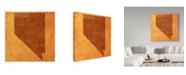 "Trademark Global Red Atlas Designs 'Nevada State Words' Canvas Art - 35"" x 35"""