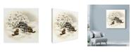 "Trademark Global Peggy Harris 'Raccoon Christmas Lights' Canvas Art - 35"" x 35"""