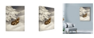 "Trademark Global Peggy Harris 'Peace On Earth Rabbit' Canvas Art - 24"" x 32"""
