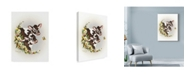 "Trademark Global Peggy Harris 'Brown Cows' Canvas Art - 24"" x 32"""