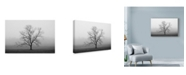 "Trademark Global Nicholas Bell Photography 'Velvet Sunrise' Canvas Art - 47"" x 30"""