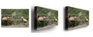 "Trademark Global Nicole Dietz 'Dakota Prairie Dog' Canvas Art - 47"" x 30"""