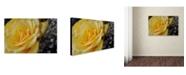 """Trademark Global Monica Fleet 'Maha'oi' Canvas Art - 32"""" x 22"""""""