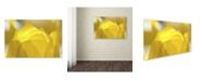 "Trademark Global Kurt Shaffer 'Yellow Tulip Double Exposure' Canvas Art - 22"" x 32"""