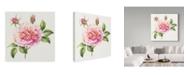 "Trademark Global Janneke Brinkman-Salentijn 'Single Pink Rose' Canvas Art - 14"" x 14"""