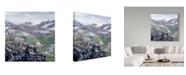 """Trademark Global Jeff Tift 'Dall Sheep At Denali' Canvas Art - 14"""" x 14"""""""