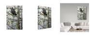 "Trademark Global Jeff Tift 'Misty Aspen' Canvas Art - 12"" x 19"""