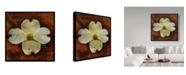 "Trademark Global John W. Golden 'White Dogwood' Canvas Art - 14"" x 14"""