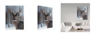 "Trademark Global Rusty Frentner 'Deer' Canvas Art - 14"" x 19"""