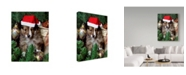 "Trademark Global Sharon Forbes 'Christmas Pup' Canvas Art - 14"" x 19"""