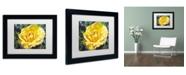 "Trademark Global David Lloyd Glover 'Golden Rain' Matted Framed Art - 11"" x 14"""