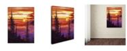 """Trademark Global David Lloyd Glover 'Golden Moment' Canvas Art - 18"""" x 24"""""""