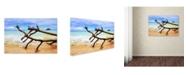 "Trademark Global Jason Shaffer 'Hawaii 2' Canvas Art - 19"" x 12"""
