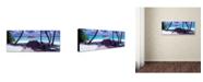 "Trademark Global David Evans 'Gateway to Paradise' Canvas Art - 6"" x 19"""