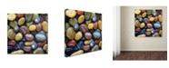 "Trademark Global David Evans 'Shells & Pebbles' Canvas Art - 18"" x 18"""