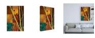 "Trademark Global Pablo Esteban Bamboo Chutes on Squares Canvas Art - 36.5"" x 48"""