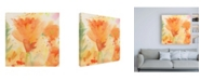 "Trademark Global Sheila Golde Windblown Poppies #2 Canvas Art - 19.5"" x 26"""