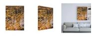 "Trademark Global John Gavrili Autumn Detail Canvas Art - 27"" x 33.5"""