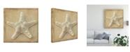"Trademark Global Judy Stalus Sepia Shell I Canvas Art - 20"" x 25"""