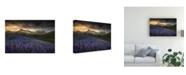 "Trademark Global Peter Svoboda Mqep Blue Meadows Canvas Art - 20"" x 25"""