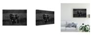 "Trademark Global Massimo Mei Alone Under the Rain Canvas Art - 37"" x 49"""