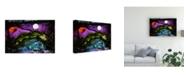 "Trademark Global Michelle Mccullough Midnight Sky Canvas Art - 20"" x 25"""