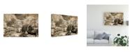 """Trademark Global Monte Nagler Bridge at Japanese Tea Garden San Francisco California Canvas Art - 20"""" x 25"""""""