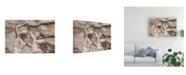 "Trademark Global Monte Nagler The Dancers Canvas Art - 20"" x 25"""