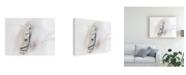 """Trademark Global Ozana Sturgeon Purebred III Canvas Art - 20"""" x 25"""""""