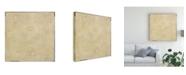 "Trademark Global Pablo Esteban Beige Abstract Paint Canvas Art - 15.5"" x 21"""