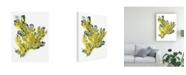 "Trademark Global June Erica Vess Citron Sea Kelp IV Canvas Art - 27"" x 33.5"""