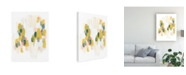 "Trademark Global June Erica Vess Verdant Spectrum I Canvas Art - 27"" x 33.5"""
