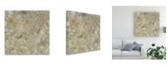"Trademark Global Pam Ilosky Abstract Canvas Art - 15.5"" x 21"""
