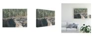 "Trademark Global Natasha Chabot Virginia Forest II Canvas Art - 27"" x 33.5"""