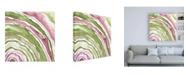 "Trademark Global Melissa Wang Up Close Agate III Canvas Art - 19.5"" x 26"""