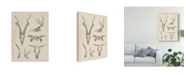 "Trademark Global Ethan Harper Skull and Antler Study I Canvas Art - 37"" x 49"""