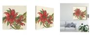 "Trademark Global Chris Paschke Poinsettia II Canvas Art - 27"" x 33"""