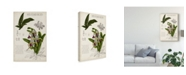 "Trademark Global Naomi Mccavitt Orchid Field Notes I Canvas Art - 15"" x 20"""