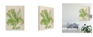 "Trademark Global Melissa Wang Vintage Coral Collection I Canvas Art - 20"" x 25"""