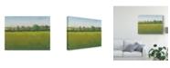 "Trademark Global Tim Otoole Verdant Countryside I Canvas Art - 20"" x 25"""