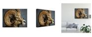 "Trademark Global Patrick Lamontagne Bighorn Totem Canvas Art - 20"" x 25"""