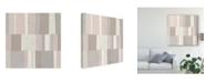 "Trademark Global Michael Mullan Blush Abstract Canvas Art - 15"" x 20"""